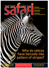 Safari Magazine | November 2014 Issue | Views And Reviews