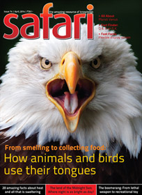 Safari - April 2014 issue - Cover page