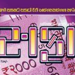 Safari Magazine - Gujarati Edition - December 2016 Issue - Cover Page