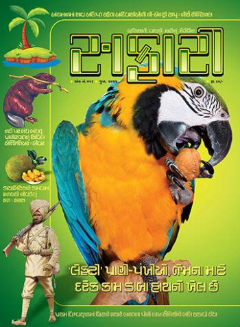 Magazine july pdf safari 2017 gujarati