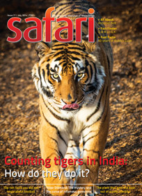 Safari Magazine | July 2014 Issue | Views And Reviews