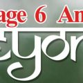 Page 6 And Beyond: Let's stir the pot... by Hureen Gandhi   Book Cover