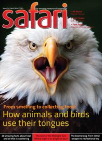 Safari - April 2014 issue - Cover page