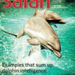 Safari - August 2014 - Issue
