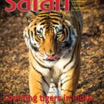 Safari magazine June 2014 Cover Page