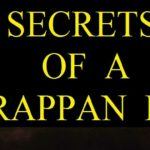 Secrets of a Harappan Pot By Vasant Dave | Book Cover