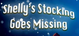 Shelly's Stocking Goes Missing By Anitha Rathod | Book Reviews